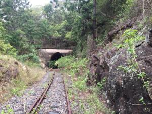 Boyne Burnett Inland Rail Trail fb