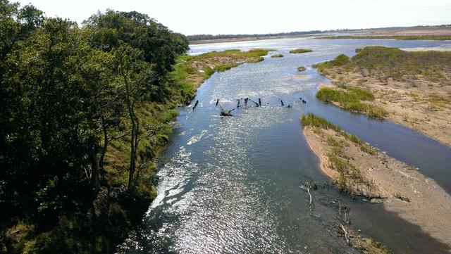 burdekin downstream
