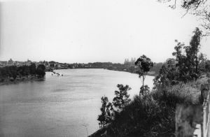 kangaroo point cliffs 1950